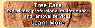 tree care learn more