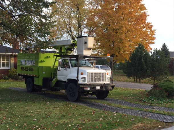 St Catharines Tree Service truck at job site